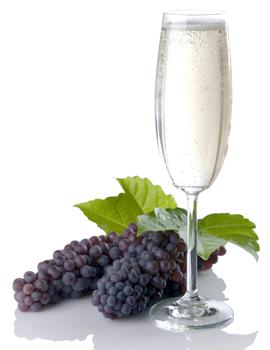 Champagne Grape Vine