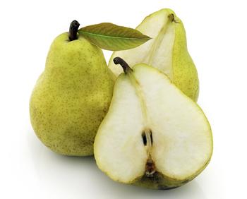 Beurre D'Anjou Pear