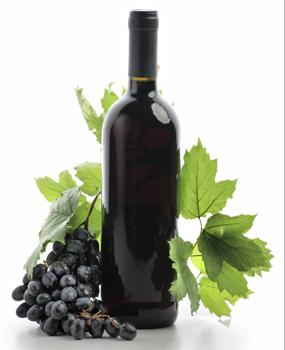 Lomanto Grape Vine