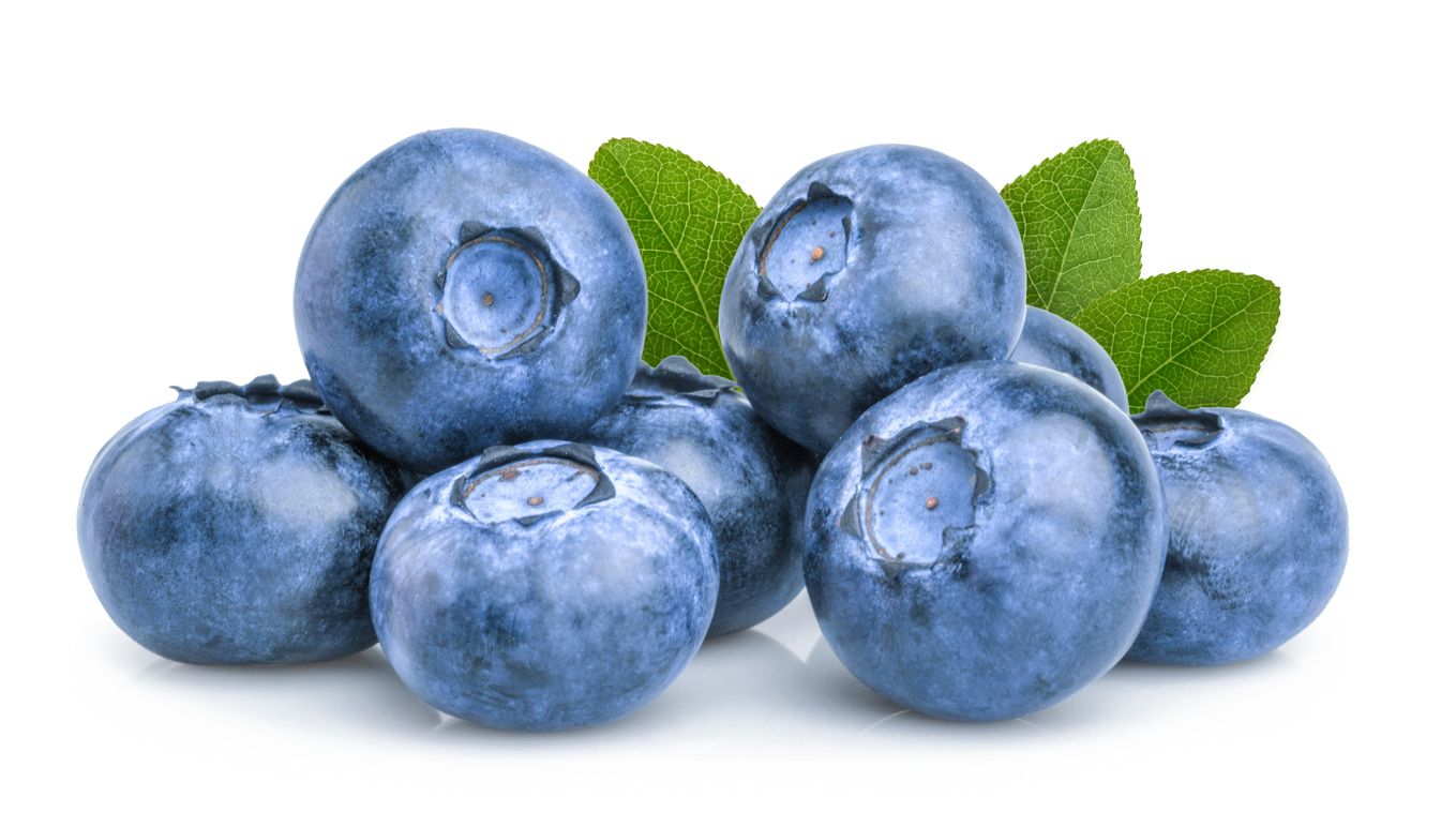 Titan™ Blueberry